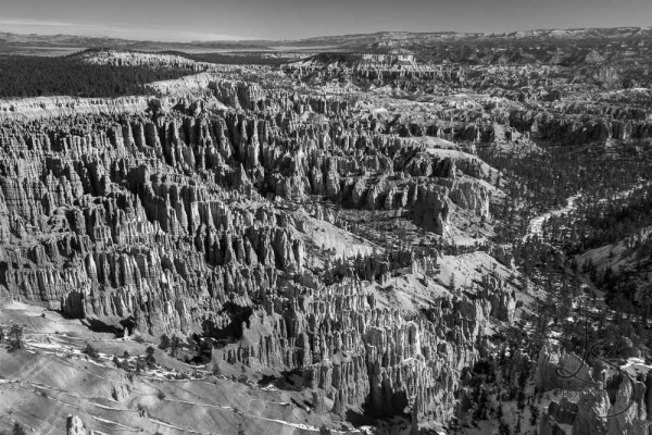 The Bryce Canyon vista in monochrome | LotsaSmiles Photography