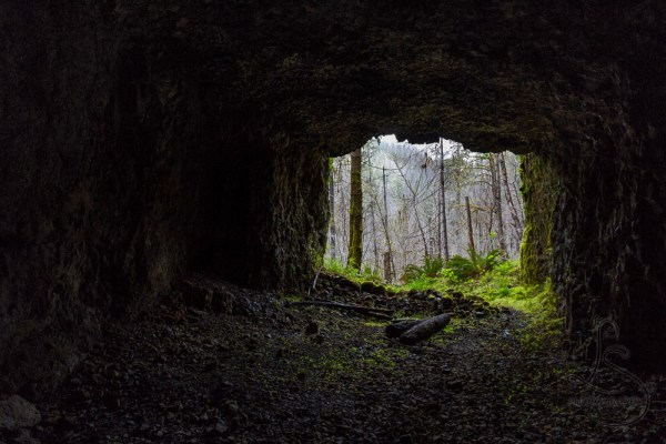 Looking out from a dark tunnel to the mossy forest beyond | LotsaSmiles Photography