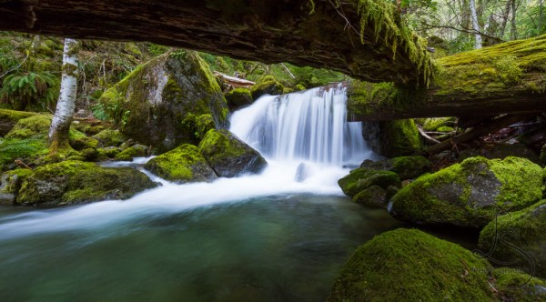 Waterfall cascading over a log, viewed from under another log | LotsaSmiles Photography