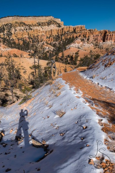 A shadow self-portrait on a snowy trail descending into the hoodoos of Bryce Canyon | LotsaSmiles Photography