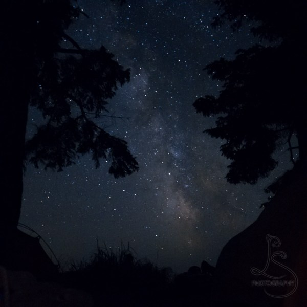 The Milky Way between trees and tents | LotsaSmiles Photography