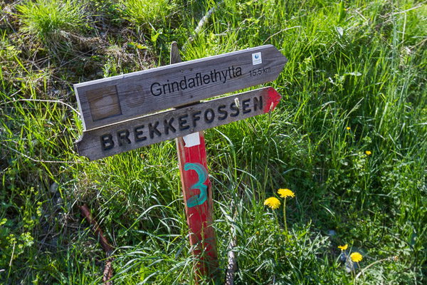 Wooden sign denoting the direction to the trail to Brekkefossen | LotsaSmiles Photography