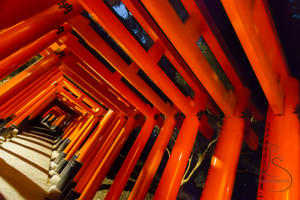 Orange torii at an angle at Fushimi Inari Shrine in Kyoto | LotsaSmiles Photography