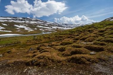 leir-glacier-1