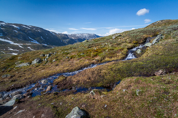 Tributaries joining the main creek crossing a tundra hillside in Norway | LotsaSmiles Photography