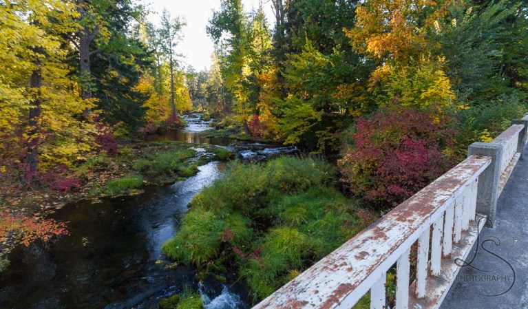 The autumn creek, viewed from the bridge | LotsaSmiles Photography