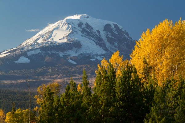 The tip of Mount Adams poking above some autumn trees | LotsaSmiles Photography