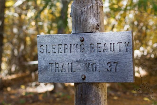 The Sleeping Beauty trailhead marker | LotsaSmiles Photography