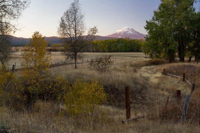 A farm field, overseen by Mount Adams | LotsaSmiles Photography