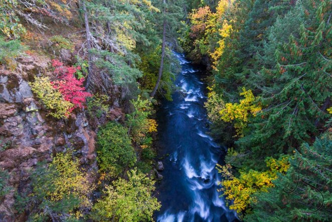 A river flowing far below, amidst autumn colors | LotsaSmiles Photography