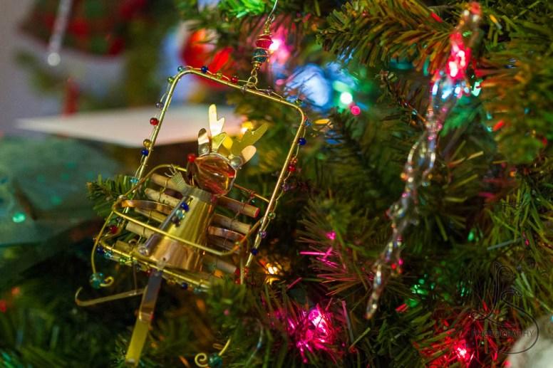 Reindeer ornament on a Christmas tree | LotsaSmiles Photography