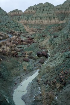 Green water flowing through Oregon's Blue Basin | LotsaSmiles Photography