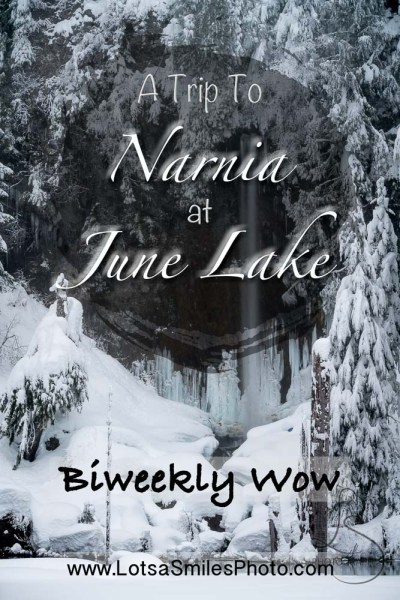 Biweekly Wow: A Trip to Narnia at June Lake | LotsaSmiles Photography | Snowshoeing is a wonderful way to experience snowy Pacific Northwest trails. Check out this discovery of a hidden clearing straight out of Narnia at Washington's June Lake! | #snowshoeing #snow #winter #photoblog #wowphoto #waterfalls #landscapephotography #photography