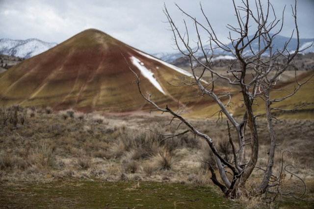 The banded landscape of the Painted Hills in Central Oregon | LotsaSmiles Photography