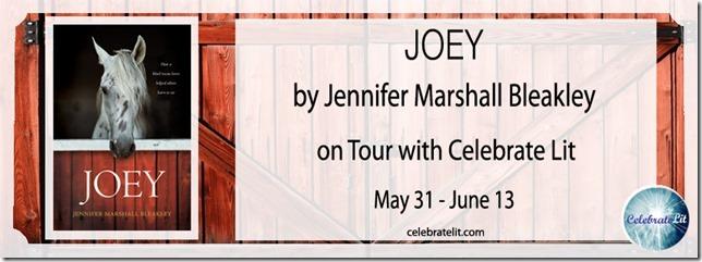 Joey-celebration-tour-FB-banner-copy
