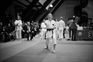 2016-dm-karate-081