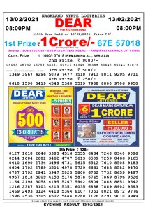 Lottery Sambad Live Result 8pm 13/02/2021 Evening Nagaland State Lottery Result Pdf Download