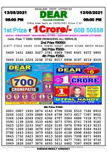 Lottery Sambad Live Result 8pm 13/05/2021 Evening Nagaland State Lottery Result Pdf Download