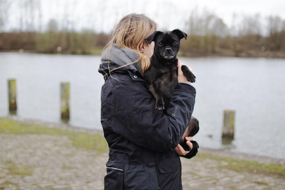 Die perfekte Jacke für Hundehalter