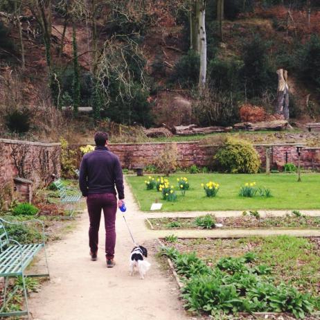 walking in the walled garden