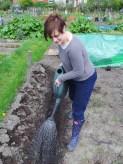 Lottie Land Girl helping