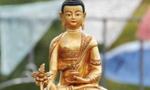 Die traditionelle Medizin aus Tibet - Wilfried Pfeffer, Janek Finn Pfeffer