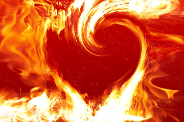It is the flame of love, not the fire of war, that burns ill-being, restores peace and brings happiness.