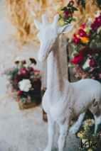 Lotus Photography Bournemouth Poole Dorset Hampshire 20190622 Anjnee & Harry Indian Wedding 439
