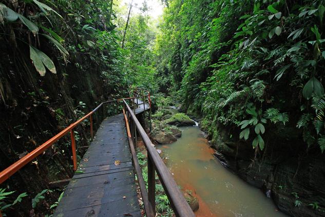 _MG_0553.1 - Trilha Santua rio