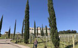 Hotel Spa do Vinho no Vale dos Vinhedos