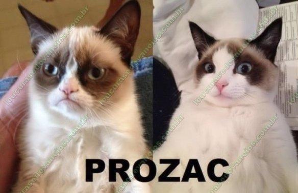 efeito do prozac