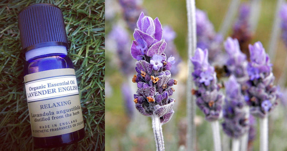 Product Of The Month – Lavender Essential Oil…