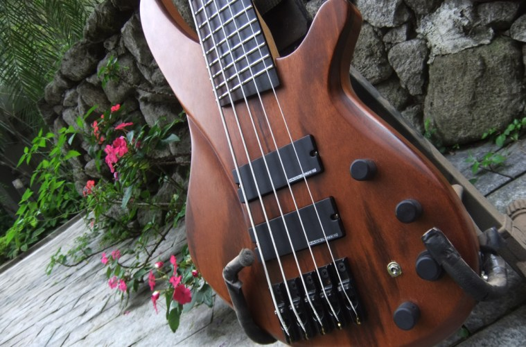 Custom made 5 strings bass