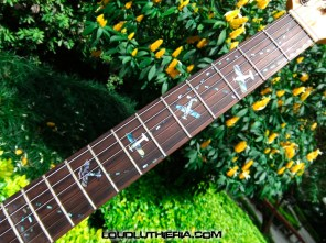 lupicaster_inlays