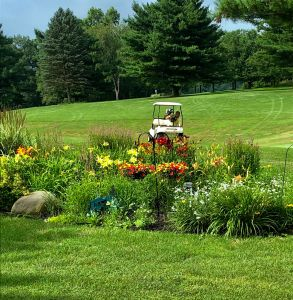 "18 Holes + Cart + ""The MONDAY lunch special"" for $28 @ Mohican Hills Golf Club"