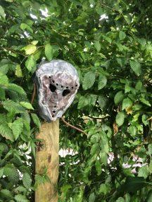 ... sculpture de Frédo Pompéani.