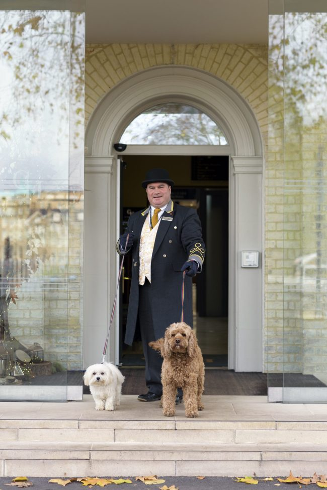 Gonville Hotel Dog Friendly Photography by Louise Young
