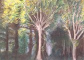 trees in chalk pastel
