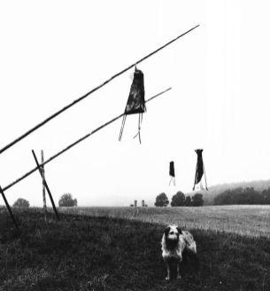 3 Objekte zum Thema Sumpf | 1993,Kupfer/Holz