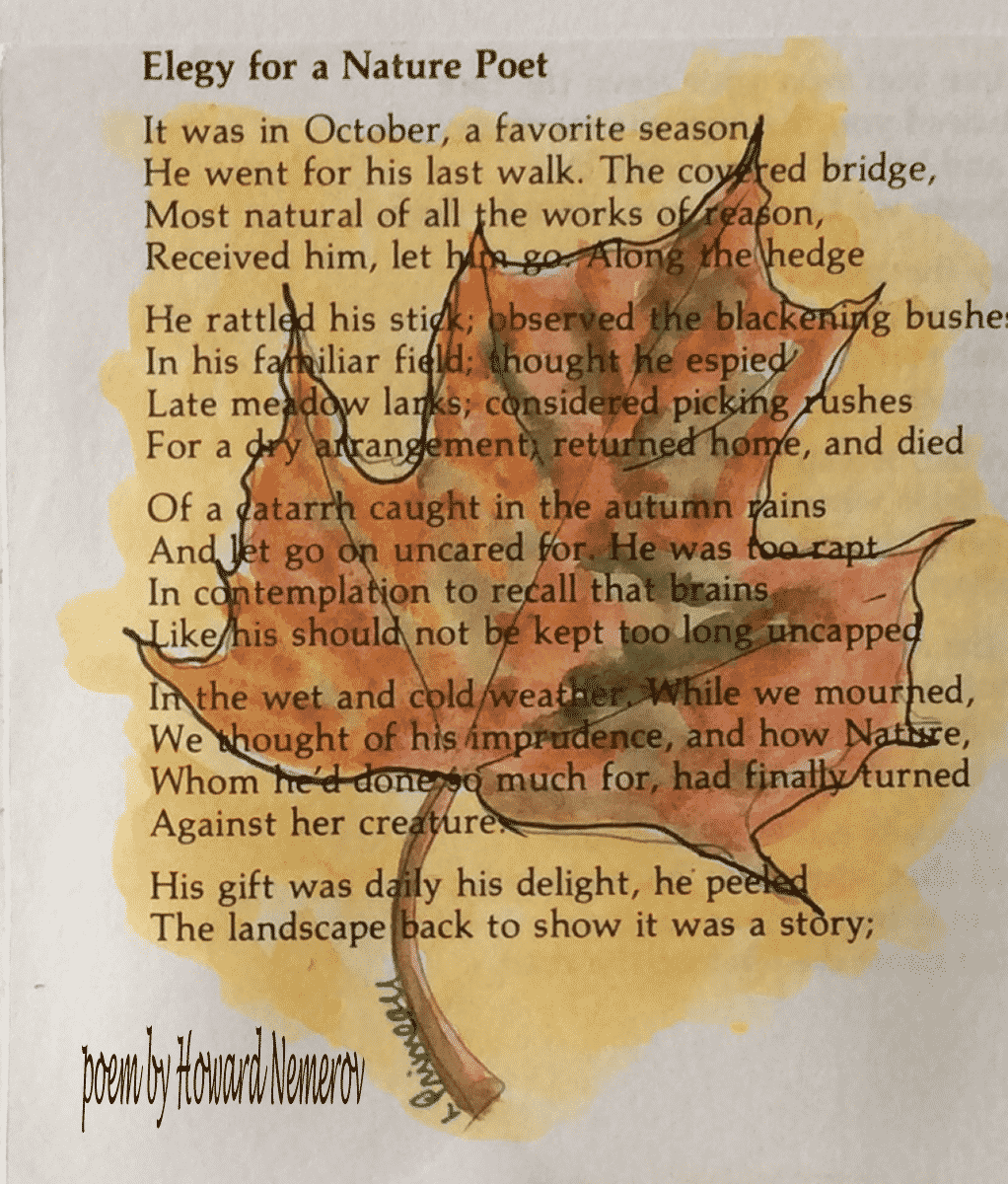 watercolour leaf over poem
