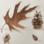 watercolour leaf and pine cones
