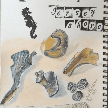 shells on Jersey shore sketch