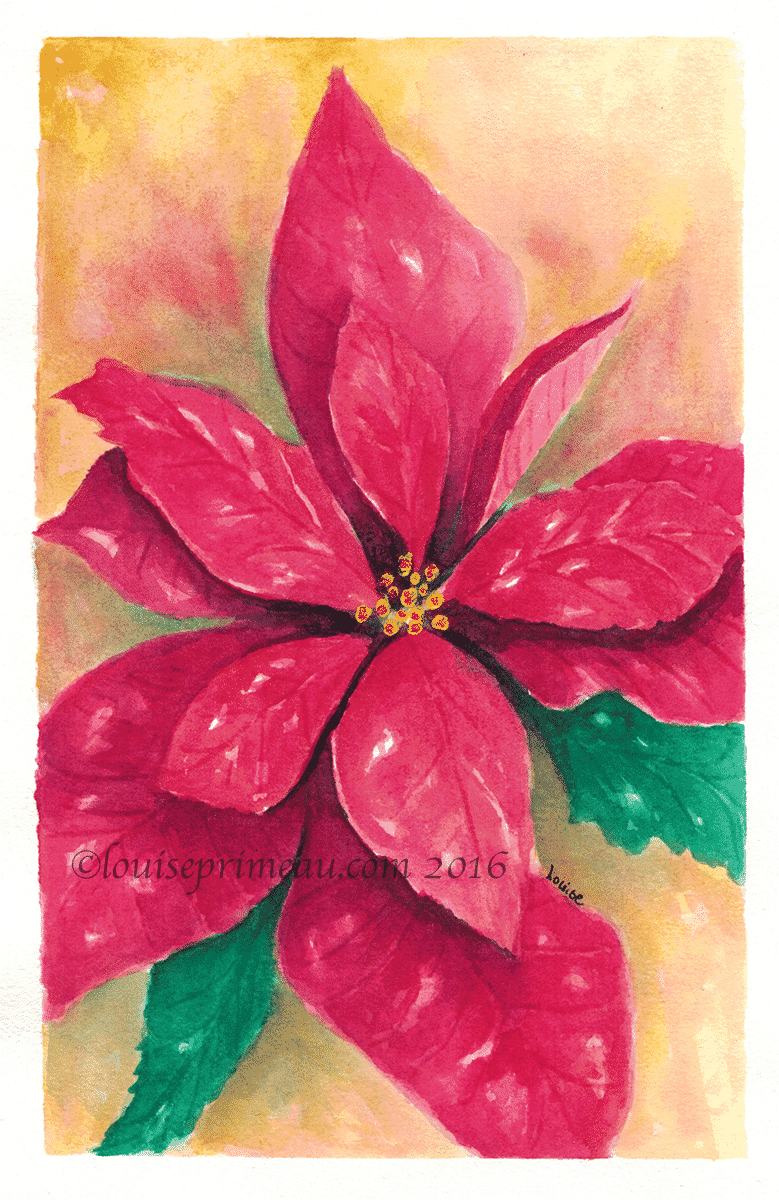 Watercolour pointsettia