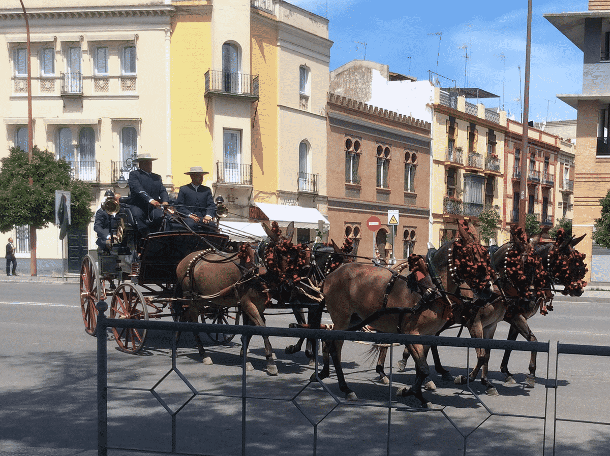 Horse-drawn carriage during Seville Feria