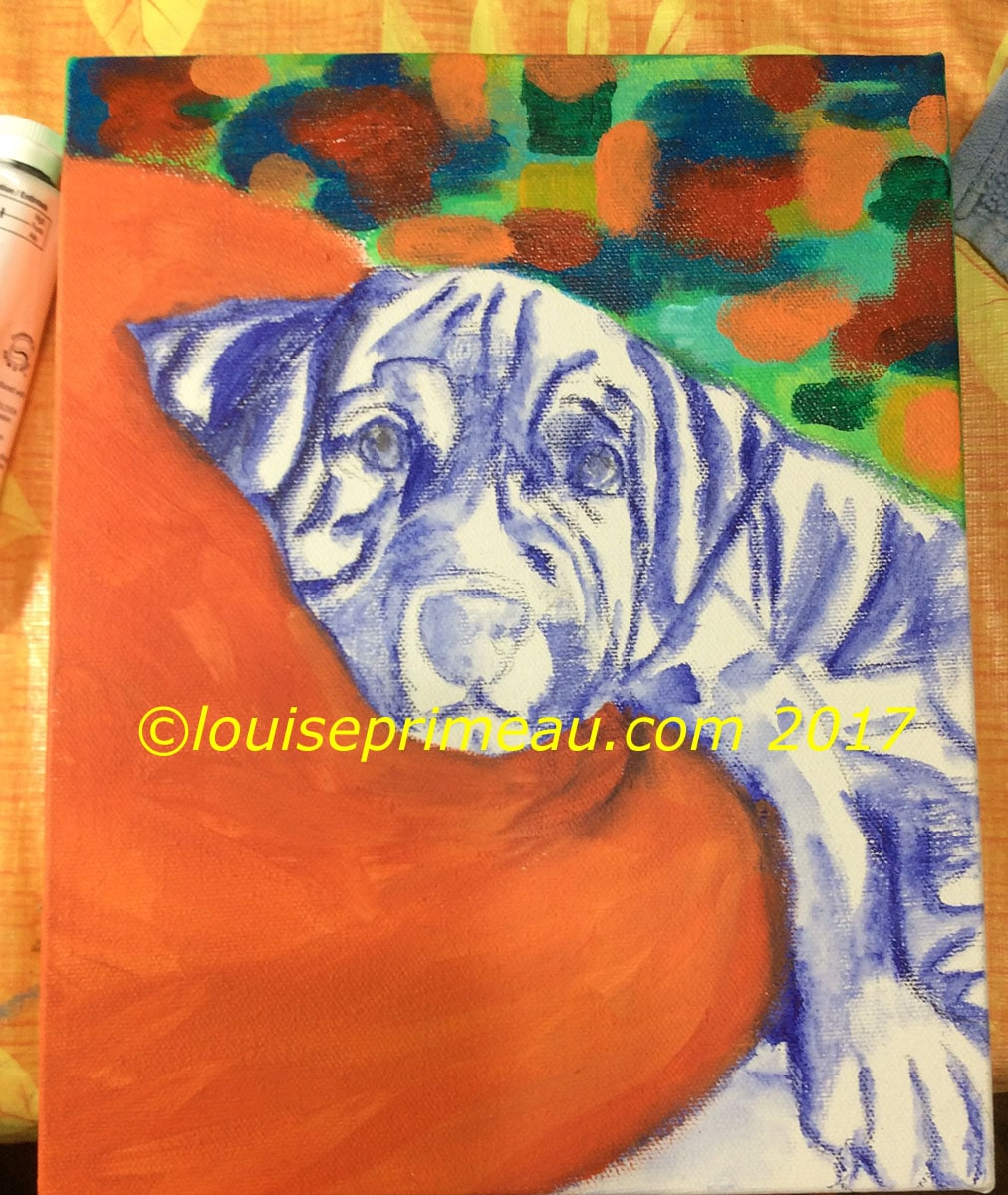 Adding huge blocks of colour to dog sketch