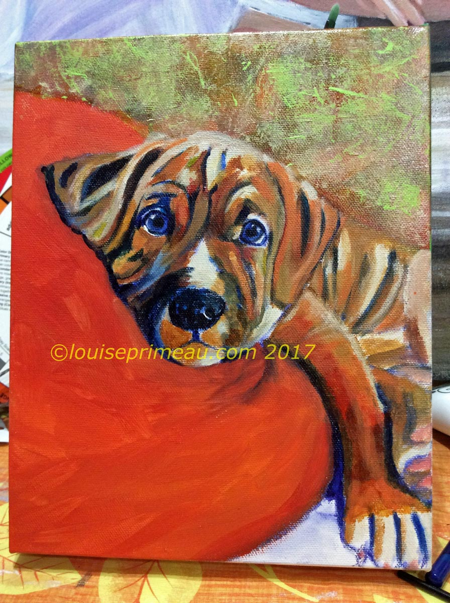 final steps in puppy portrait-touching up the blues