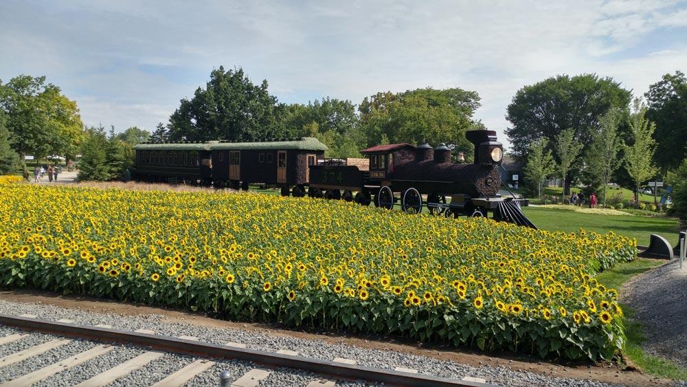train at MOSAICANADA150 Exhibit