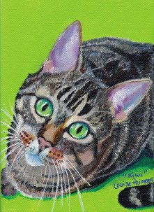Acrylic Cat Portrait by Louise Primeau - mixed media artist