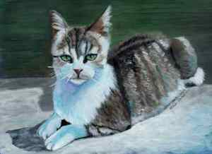 Miss Daisy acrylic Cat Portrait