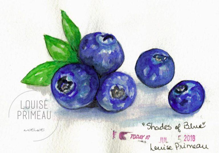 watercolour blueberries in sketchbook